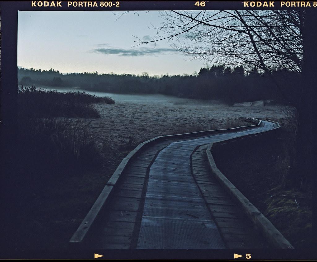 Kodak Portra 800 7.jpg