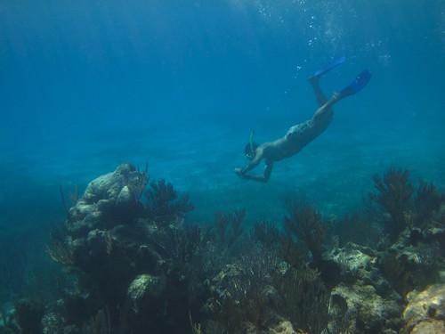 Diver Rick