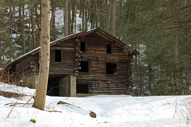 dogbird daily swatara state park bordner cabin and