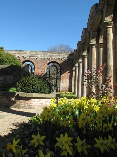 Spring in the orangery