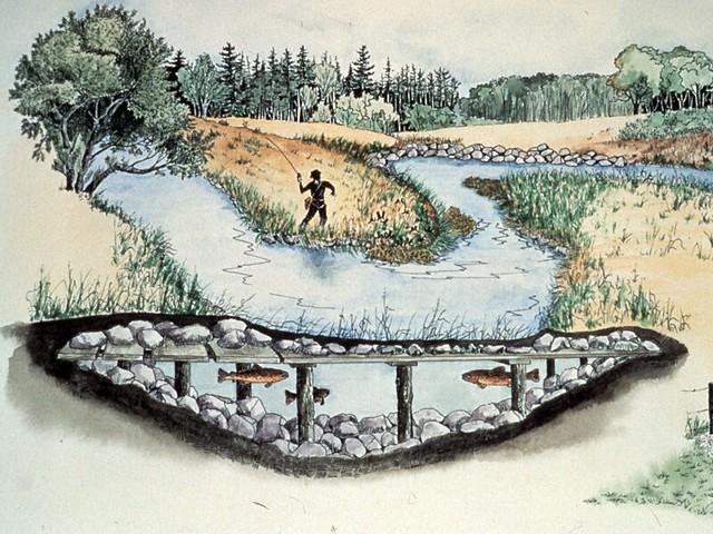 General---fish-habitat-structure-diagram