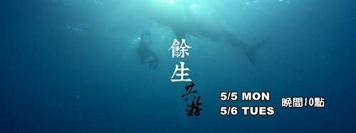 耗費十年的鯨鯊紀錄片。圖片來源:我們的島FB粉絲頁