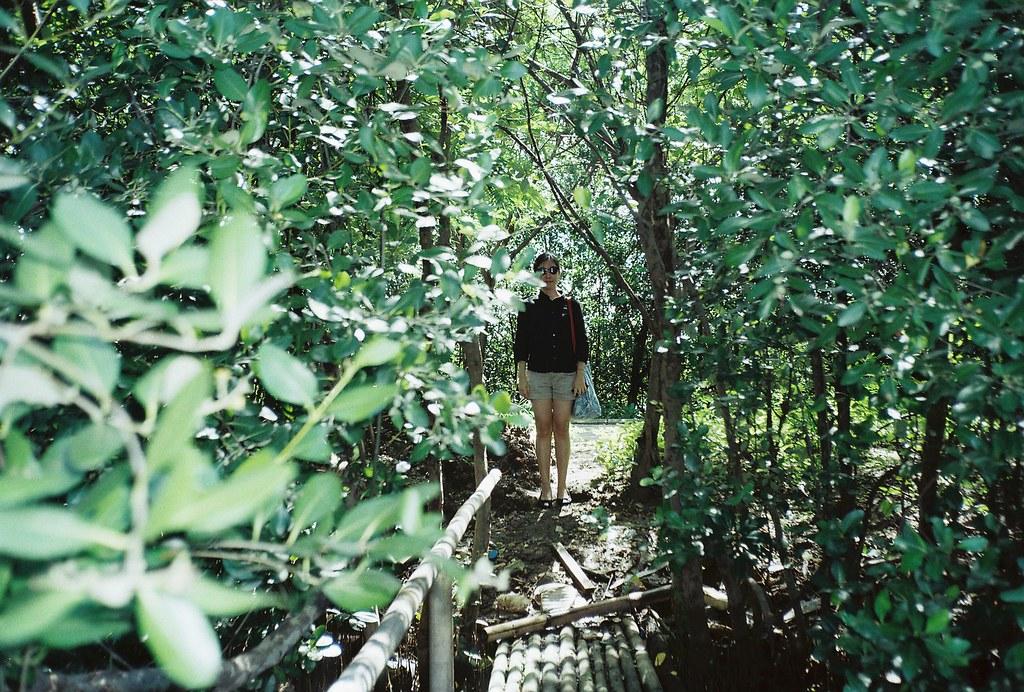 01 _ mjuII-superia200-hutan mangrove PIK