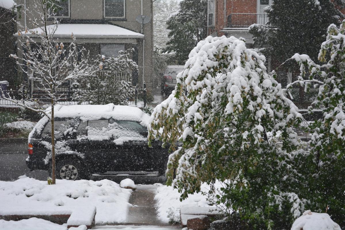 Denver May Snowfall | Brendan Heberton