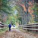 Small photo of Westford, MA Bruce Freeman Rail Trail