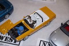 1/24 1971 Mustang DSC_0886