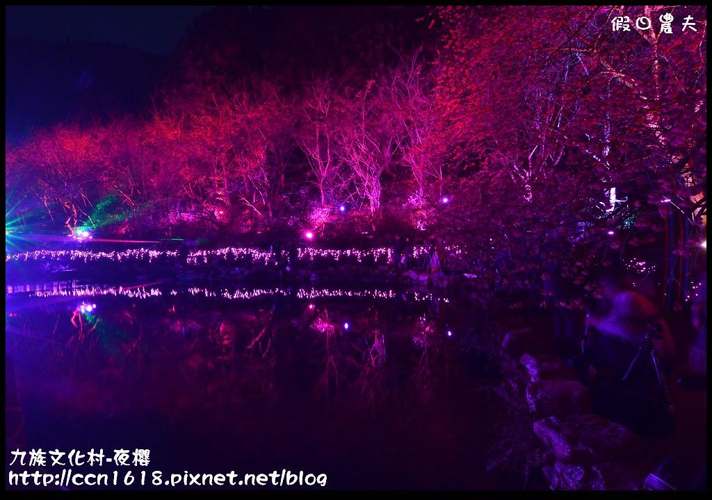 九族文化村-夜櫻DSC_4951