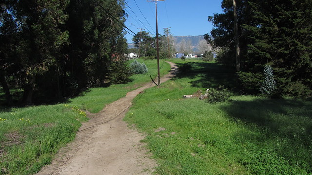 IMG_9521 Isla Vista green grass lined path near camino corto park
