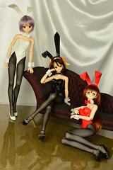 bunny014