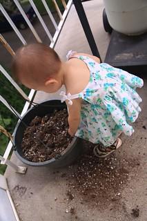 Love dirt!