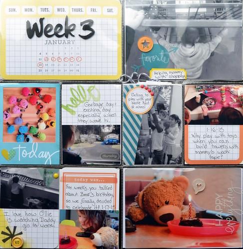 2015week3