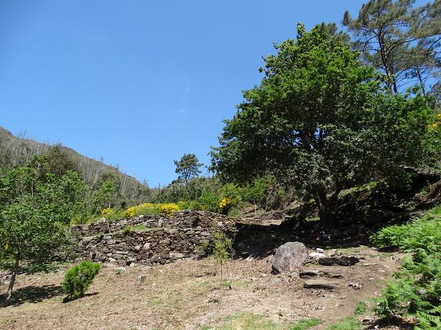 Sendero en la Ruta Alto das Torres e Alto da Lagoa