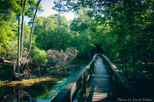 camping summer santafe color water river landscape colorful stream florida hiking vibrant scenic trail boardwalk bluespring highsprings vsco springhunters vscofilm gilchristblue