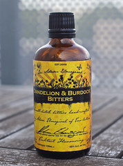 Dr Adam Elmegirab's Dandelion & Burdock bitters