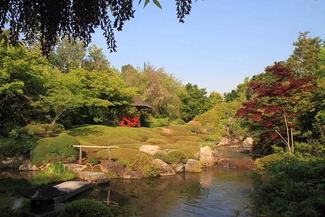Jardin japonais temple myoshin ji kyoto japon for Jardin kyoto