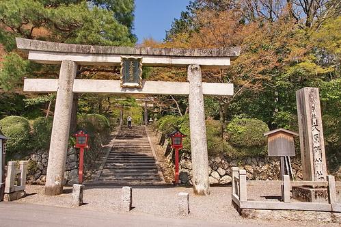 【写真】2013 桜 : 大原野神社/2021-01-15/IMGP0075