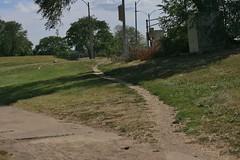 Diagonal Path Through the Grass
