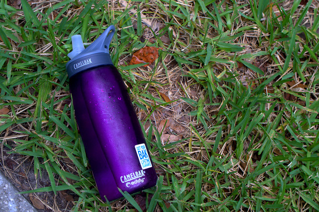 Purple CamelBak water bottle