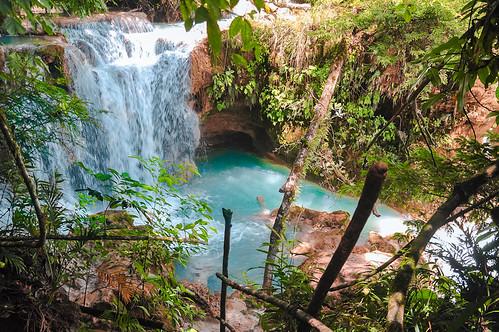 Cascadas de Agua Azul (36)
