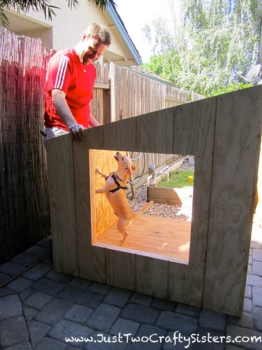 Wezley checking out his new dog house