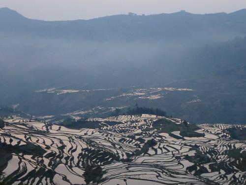 Yunnan13-Yuanyang 1-Duoyishu (12)