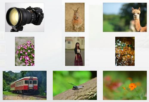 Nikon D800E plus AF-S NIKKOR 200mm f/2G ED VR II -- Full-resolution photos