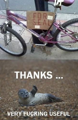 funny_pink_bicycle_seal1
