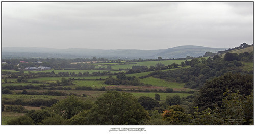 ireland mist green rain landscape grey countryside farmland limerick