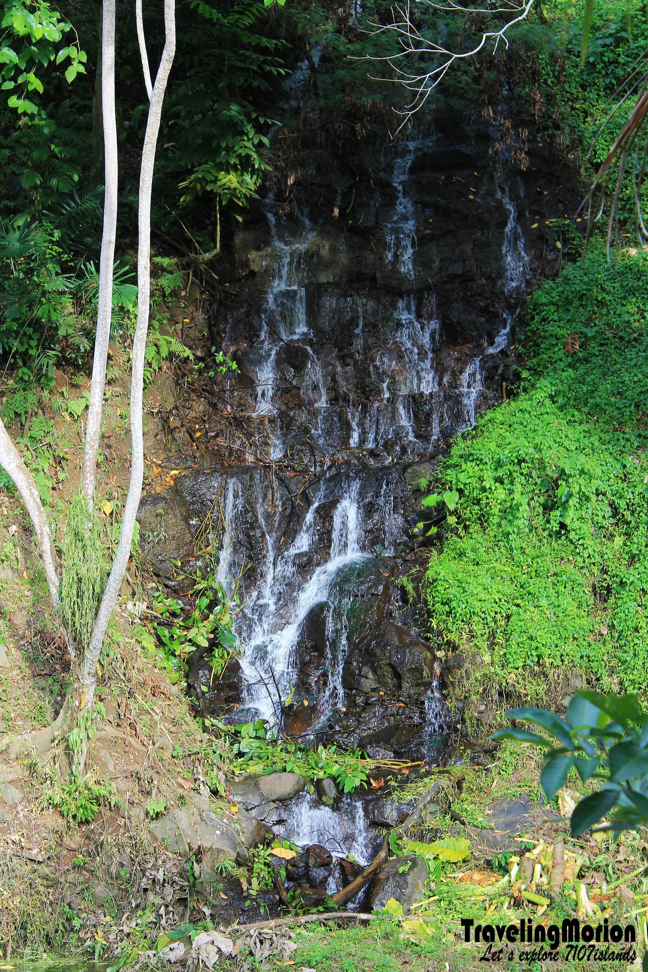 In Maria Cristina Falls and Nature Park