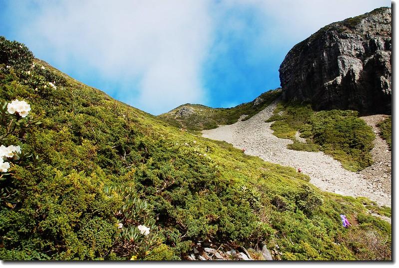 陡升(右為凱蘭特崑山) 2