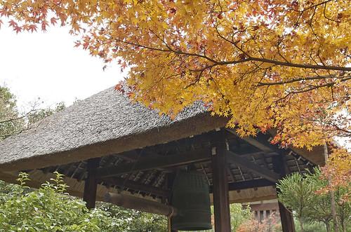 【写真】2013 紅葉 : 光悦寺/2013-12-02/IMGP4434