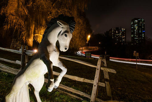 Fantasy Farm, Pottery Road at night - #339/365 by PJMixer