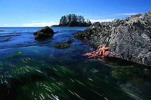 Long Beach, Tofino, West Coast Vancouver Island, British Columbia