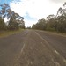 Small photo of Taree Former Alignment