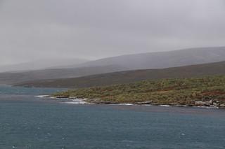008 Falklands