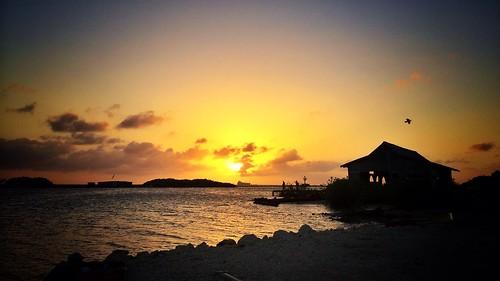 aruba islandlife savaneta uploaded:by=flickrmobile flickriosapp:filter=nofilter