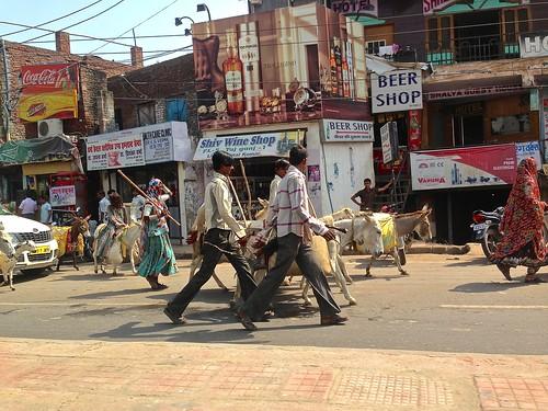 Beer shop in Agra