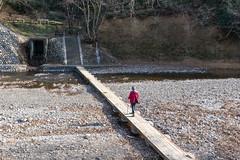 巾着田から高麗峠へ@ドレミファ橋