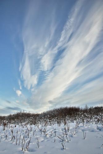 winter snow ski alaska taiga tananariver