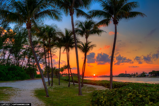 Sunset-at-Jupiter-Inlet-Park-by-Coconut-Tree