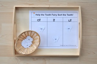 Dental Language Tray