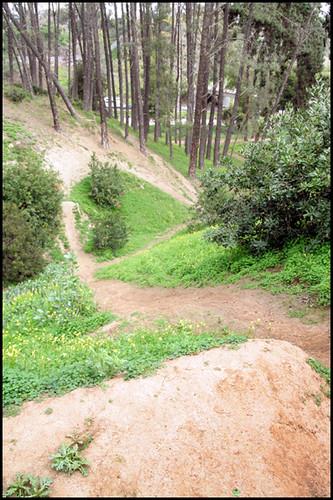 Balboa BMX Trails (4)