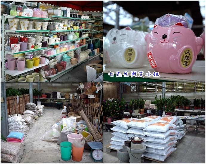 5 金羽庭花卉農場