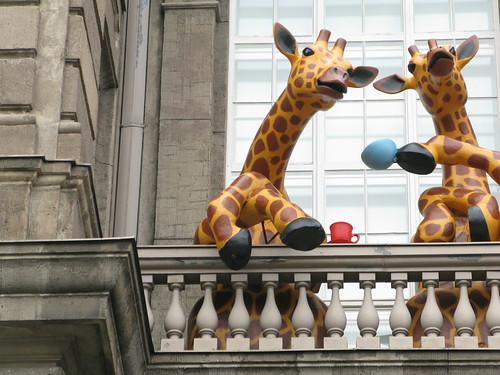 Tea Break, Giraffe Style