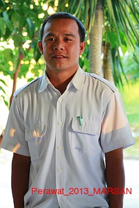 Perawat_2013_MARSAN