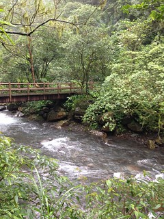 步道裡穿插的橋,增添風情。(攝影:廖靜蕙)