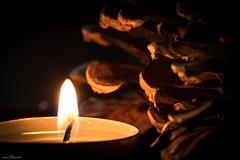Candlelight 327/365