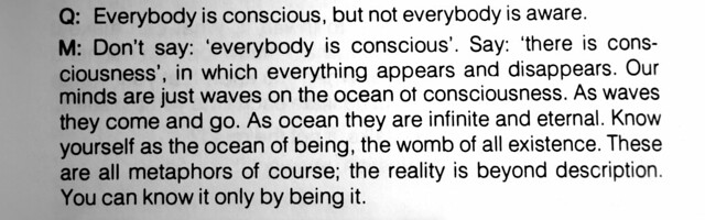 our minds are ju st waves on the ocean of consciousness.  as waves they come and go