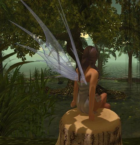Fairy bum