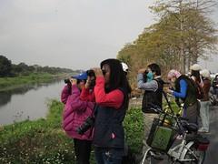 數鳥活動照 (圖片來源:中華鳥會)